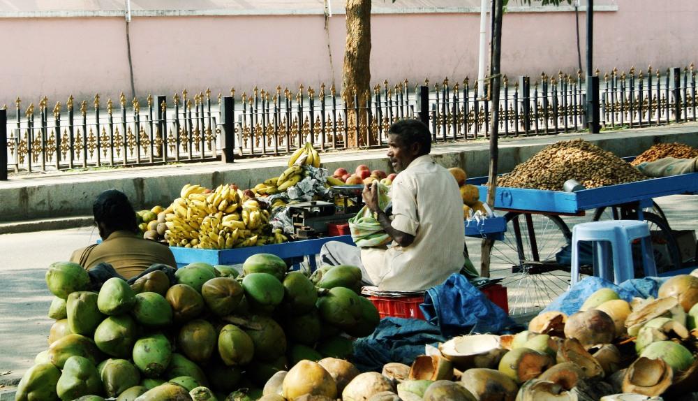 My India - A Flashback1