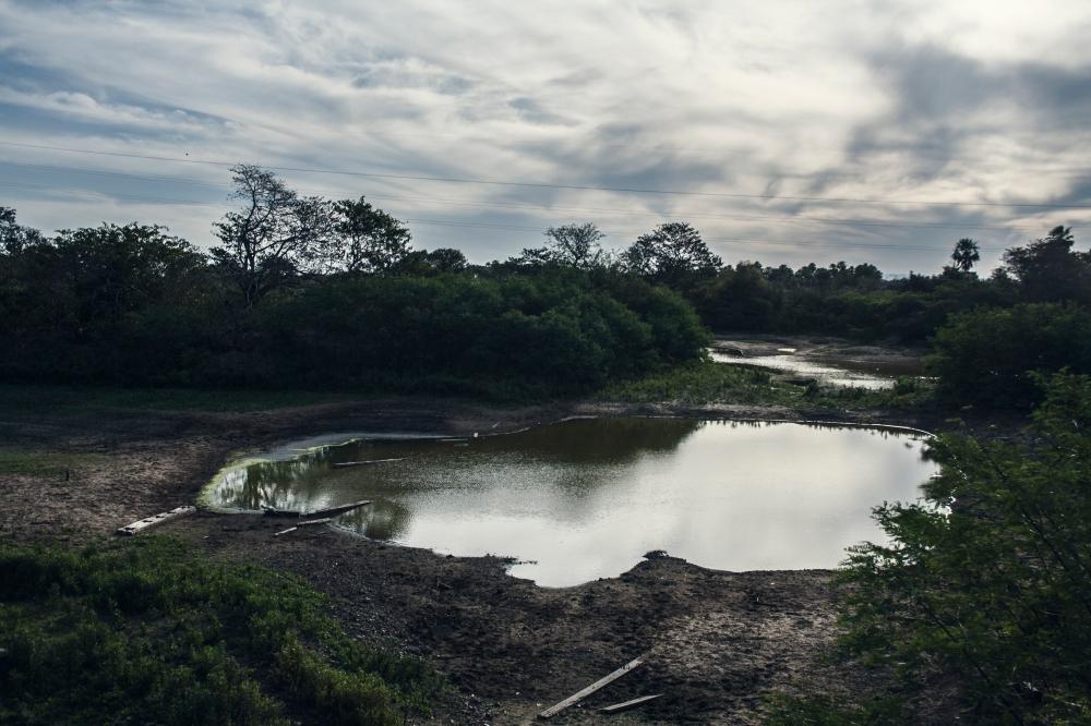 Pantanal_Wasserloch