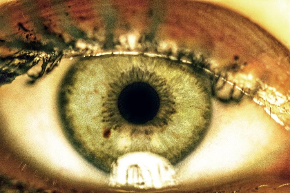 Auge_Anja1