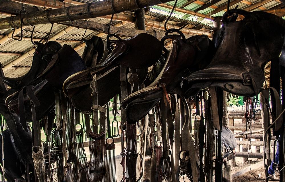 Pantanal_Pferderanch