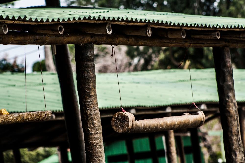 Pantanal_Pferderanch2